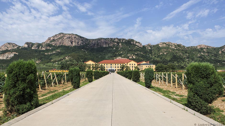 Bodegas Langues, Château Bolongbao, Château Reifeng-Auzias, Chine, Chinese wine, Dynasty, Fangshan, Grande Muraille, Hebei, Huaxia Greatwall, Lafite, Pékin, Shandong, Tianjin, Treaty Port Vineyards, Wine explorers, Wine explorer, Jean-Baptiste Ancelot, Voyage, Tour du monde, Vin, Vignoble, Bouteille, Degustation, Wine, Wine travel, Wine inventory, Wine experience, Wine lover, Wine moment, Wine trip