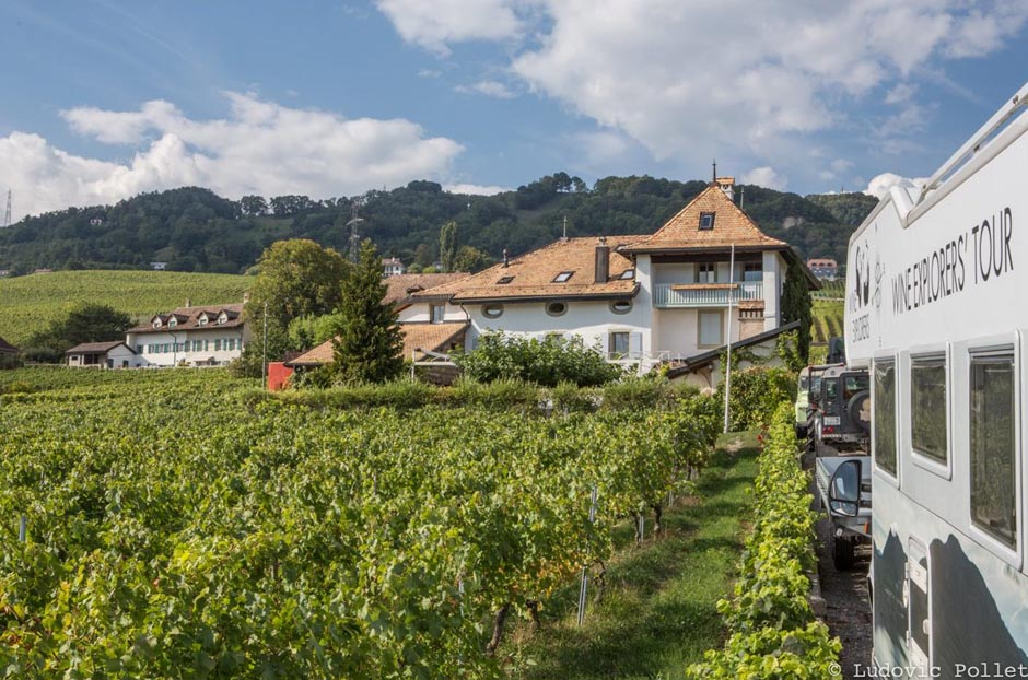 Aargau wines, Buchmann Weine, chasselas, Chiquet-les-Vins, Domaine de Maison Blanche, mondeuse, Mont-sur-Rolle, Swiss wines, Wine explorers, Wine explorer, Jean-Baptiste Ancelot, Voyage, Tour du monde, Vin, Vignoble, Bouteille, Degustation, Wine, Wine travel, Wine inventory, Wine experience, Wine lover, Wine moment, Wine trip